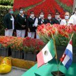 Embajada de Países Bajos entrega tulipanes a personal médico del IMSS que atiende COVID-19